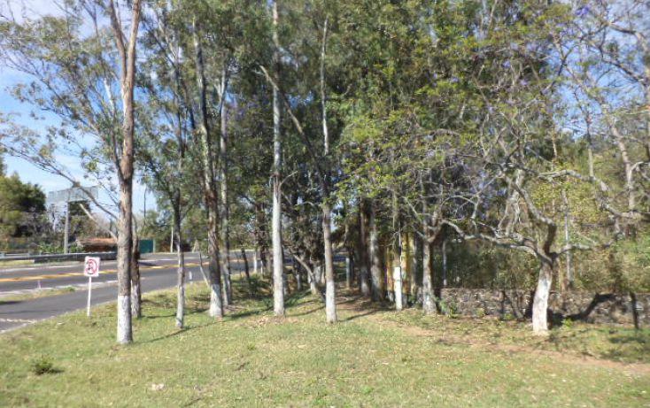 Foto de terreno habitacional en venta en, los ocotes, tepoztlán, morelos, 2025873 no 13