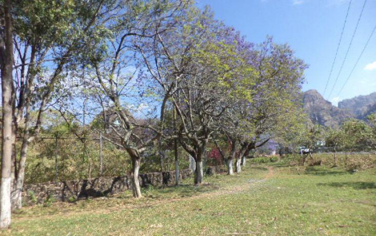 Foto de terreno habitacional en venta en, los ocotes, tepoztlán, morelos, 2025873 no 14
