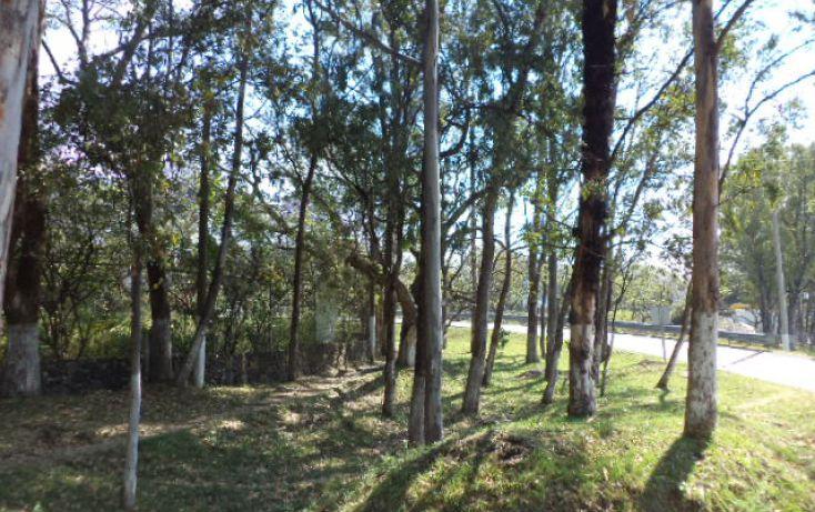 Foto de terreno habitacional en venta en, los ocotes, tepoztlán, morelos, 2025873 no 15