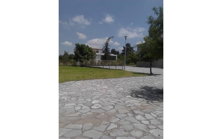 Foto de terreno habitacional en venta en  , los olivos, zapopan, jalisco, 2045629 No. 11