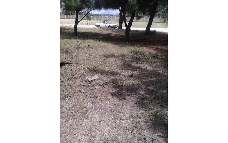 Foto de terreno habitacional en venta en  , los olivos, zapopan, jalisco, 2045629 No. 12