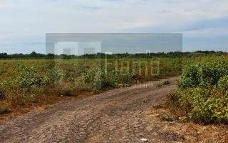 Foto de rancho en venta en  , los otates, santiago ixcuintla, nayarit, 1071133 No. 08