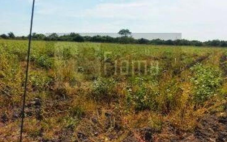 Foto de rancho en venta en  , los otates, santiago ixcuintla, nayarit, 1071133 No. 09