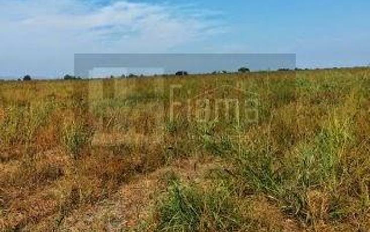 Foto de rancho en venta en  , los otates, santiago ixcuintla, nayarit, 1071133 No. 10