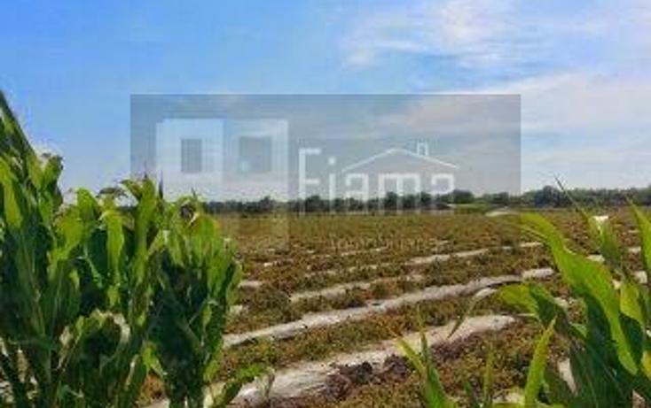 Foto de rancho en venta en  , los otates, santiago ixcuintla, nayarit, 1071133 No. 11