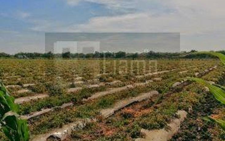 Foto de rancho en venta en  , los otates, santiago ixcuintla, nayarit, 1071133 No. 13