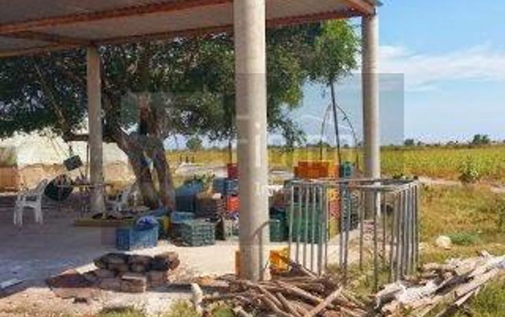 Foto de rancho en venta en  , los otates, santiago ixcuintla, nayarit, 1071133 No. 17