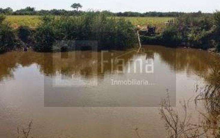 Foto de rancho en venta en  , los otates, santiago ixcuintla, nayarit, 1071133 No. 23