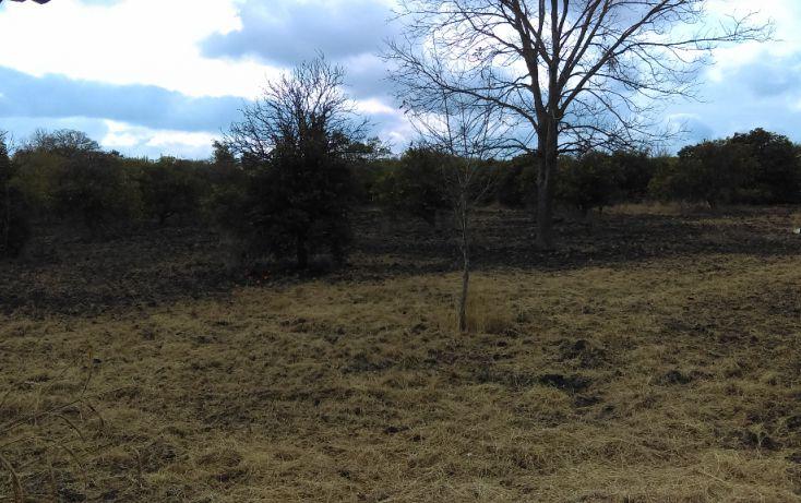 Foto de terreno habitacional en venta en, los palmitos, cadereyta jiménez, nuevo león, 1725688 no 02