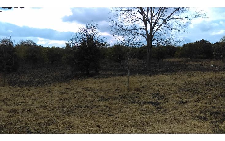 Foto de terreno habitacional en venta en  , los palmitos, cadereyta jim?nez, nuevo le?n, 1725688 No. 02