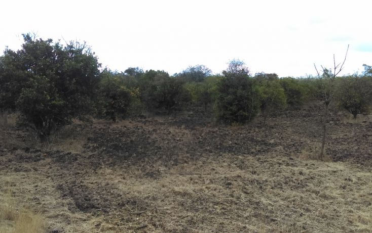 Foto de terreno habitacional en venta en, los palmitos, cadereyta jiménez, nuevo león, 1725688 no 03