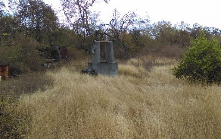 Foto de terreno habitacional en venta en, los palmitos, cadereyta jiménez, nuevo león, 1725688 no 04
