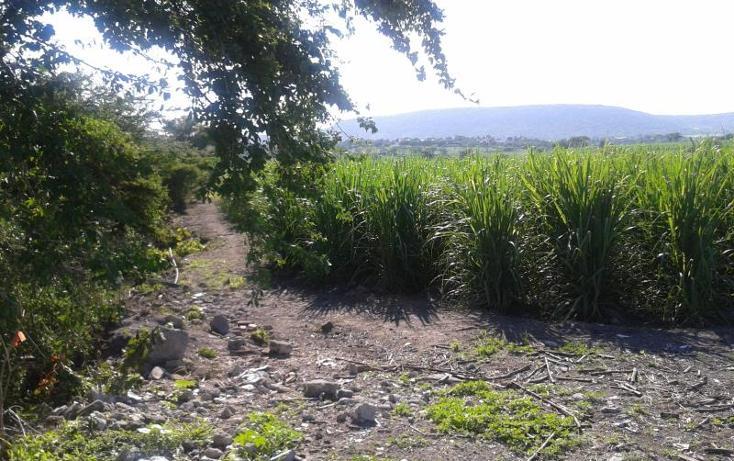 Foto de terreno habitacional en venta en domicilio conocido , los pilares, jojutla, morelos, 1016341 No. 04