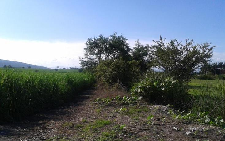 Foto de terreno habitacional en venta en domicilio conocido , los pilares, jojutla, morelos, 1016341 No. 05