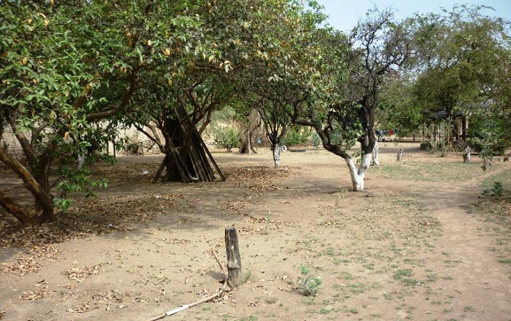 Foto de terreno industrial en venta en los pinos 2300, la guadalupana, san pedro tlaquepaque, jalisco, 1987368 No. 03