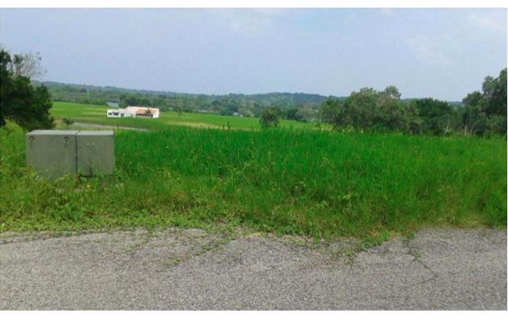 Foto de terreno habitacional en venta en  , los pinos, aldama, tamaulipas, 1283887 No. 02