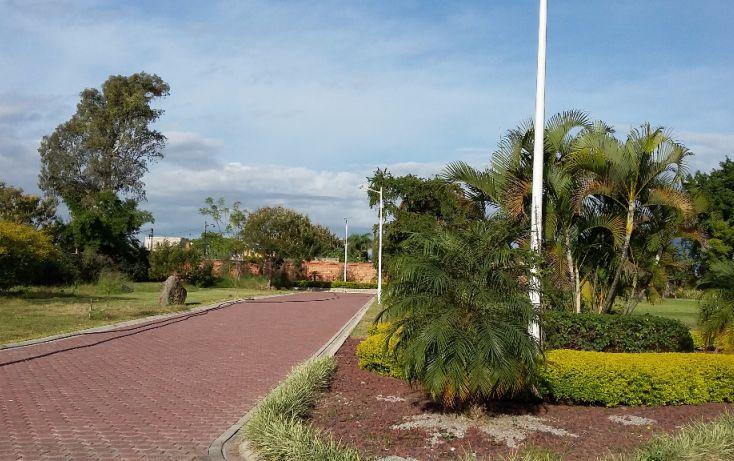 Foto de terreno habitacional en venta en, los pinos jiutepec, jiutepec, morelos, 1499415 no 05