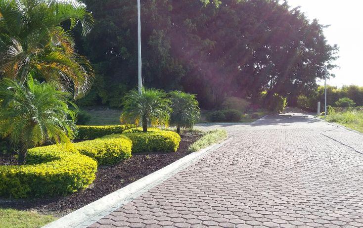 Foto de terreno habitacional en venta en, los pinos jiutepec, jiutepec, morelos, 1499415 no 06