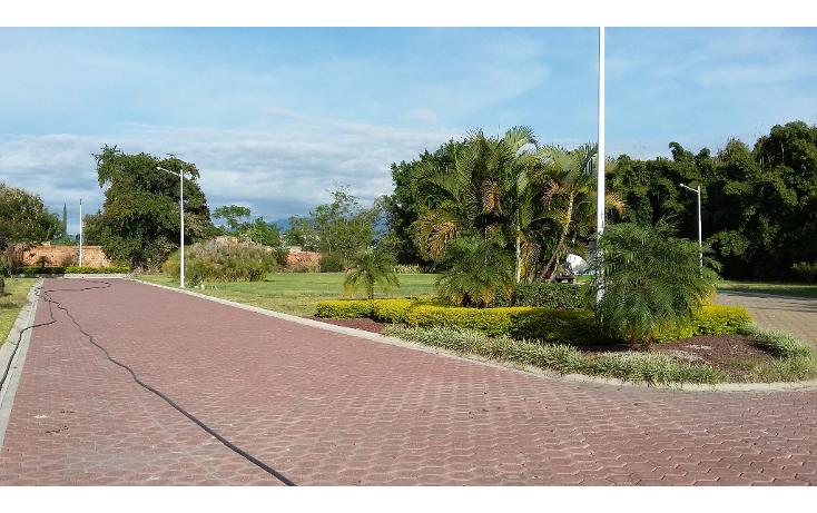 Foto de terreno habitacional en venta en  , los pinos jiutepec, jiutepec, morelos, 1517909 No. 04