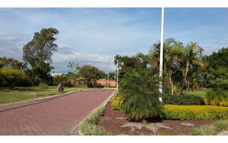 Foto de terreno habitacional en venta en  , los pinos jiutepec, jiutepec, morelos, 1518121 No. 05