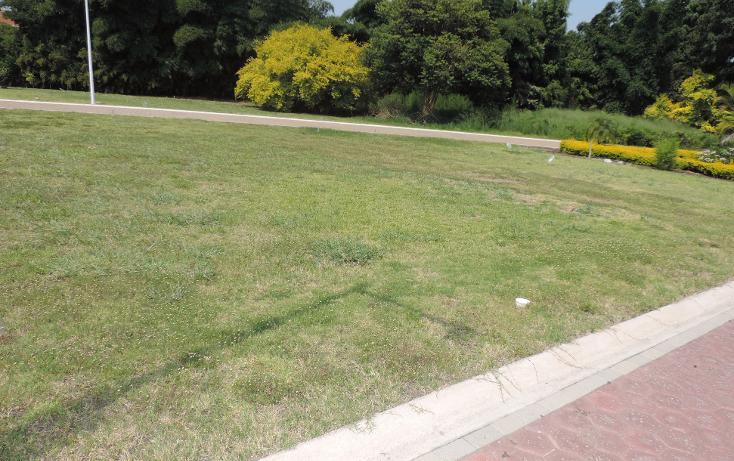 Foto de terreno habitacional en venta en  , los pinos jiutepec, jiutepec, morelos, 941067 No. 05