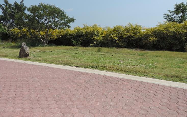Foto de terreno habitacional en venta en  , los pinos jiutepec, jiutepec, morelos, 941067 No. 06