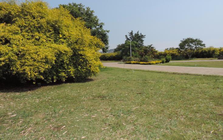 Foto de terreno habitacional en venta en  , los pinos jiutepec, jiutepec, morelos, 941067 No. 10