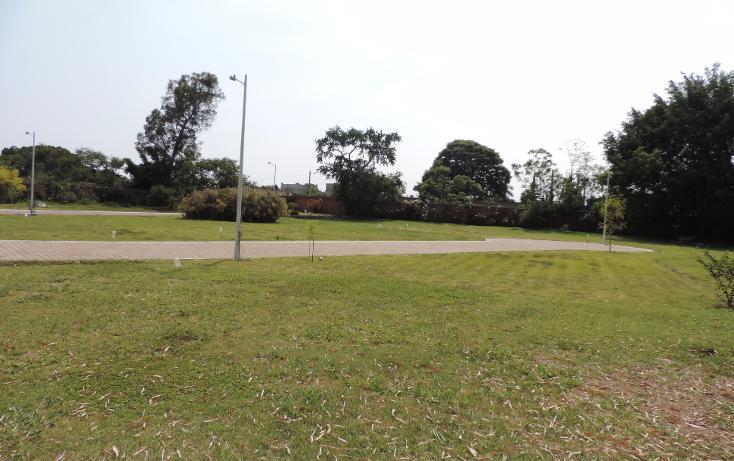 Foto de terreno habitacional en venta en  , los pinos jiutepec, jiutepec, morelos, 941067 No. 11