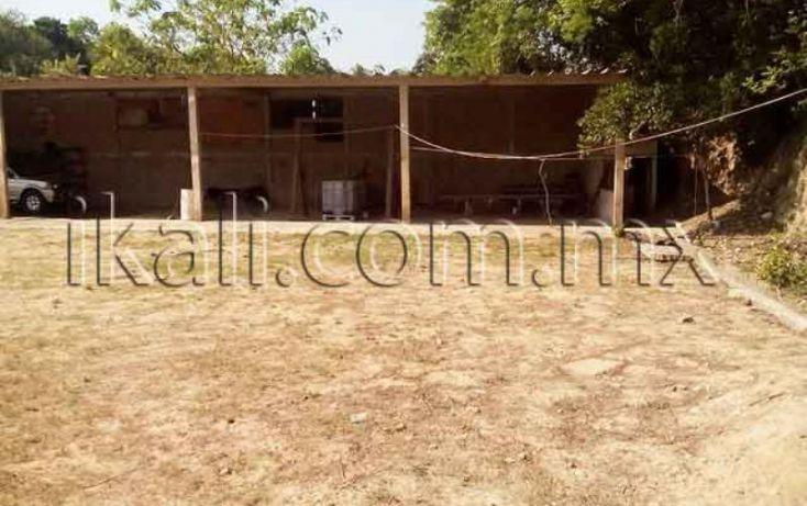Foto de terreno habitacional en renta en los pinos, los mangos, tuxpan, veracruz, 1315371 no 13