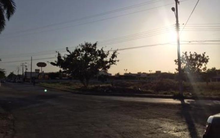 Foto de terreno comercial en venta en  , los pinos, mérida, yucatán, 1059157 No. 07