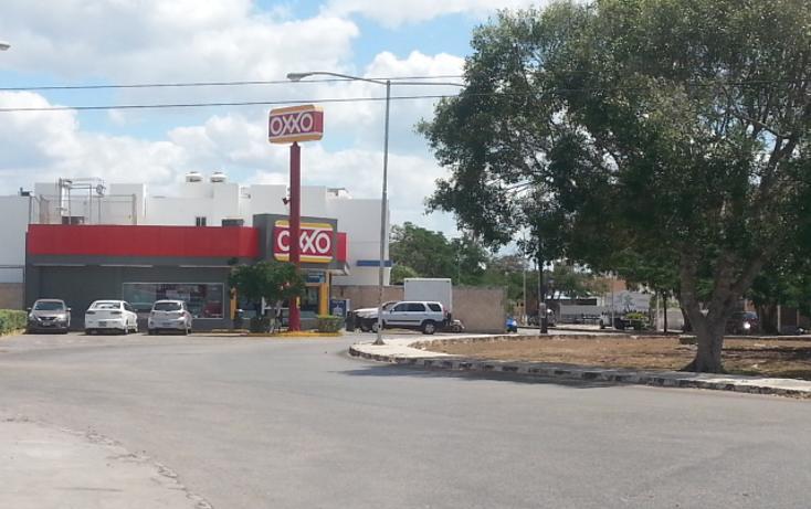Foto de local en renta en  , los pinos, mérida, yucatán, 1732020 No. 08