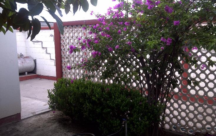 Foto de casa en renta en  , los pinos, monclova, coahuila de zaragoza, 1102839 No. 11