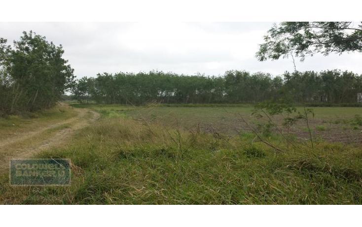 Foto de terreno comercial en renta en  , los presidentes, matamoros, tamaulipas, 1847832 No. 07