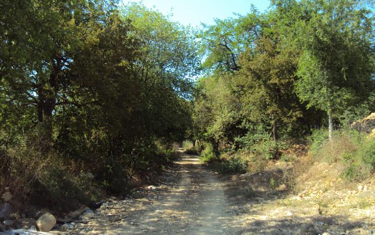 Foto de terreno habitacional en venta en  , los rodriguez, santiago, nuevo león, 1269693 No. 03