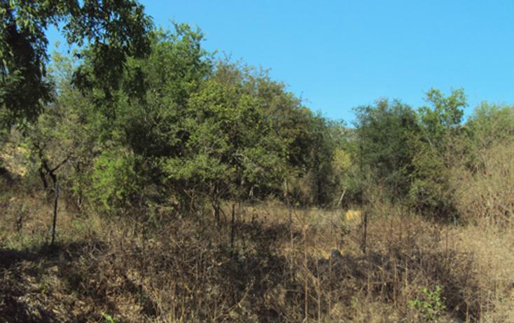 Foto de terreno habitacional en venta en  , los rodriguez, santiago, nuevo león, 1269693 No. 04