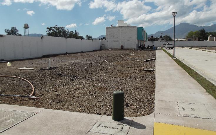 Foto de terreno habitacional en venta en  , los sauces, tepic, nayarit, 1611126 No. 04