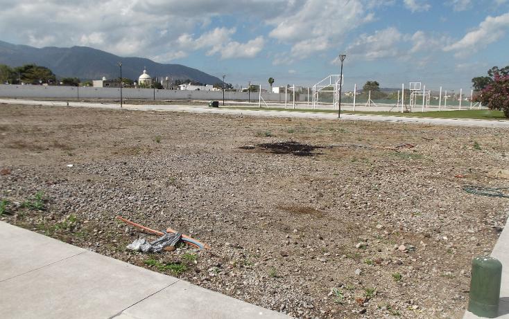 Foto de terreno habitacional en venta en  , los sauces, tepic, nayarit, 1611126 No. 05