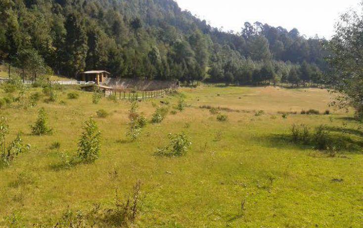 Foto de terreno habitacional en venta en, los saúcos, valle de bravo, estado de méxico, 1657899 no 04