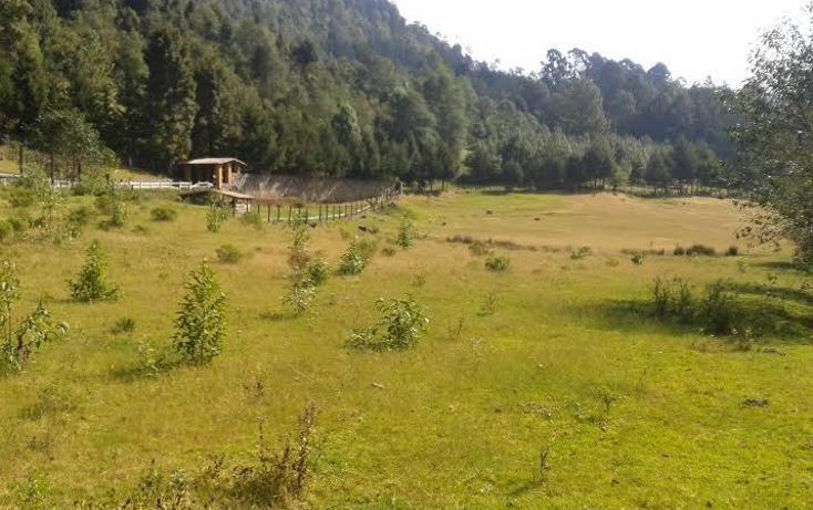 Foto de terreno habitacional en venta en carretera interna de la comunidad , los saúcos, valle de bravo, méxico, 1657899 No. 04