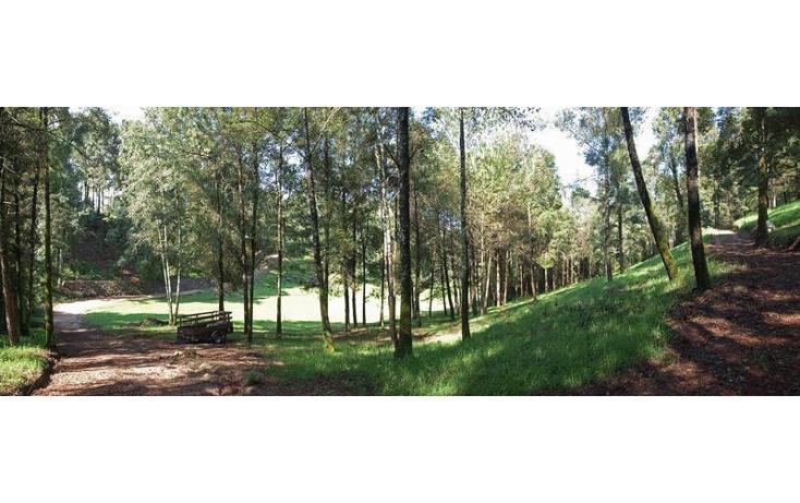 Foto de terreno habitacional en venta en  , los sa?cos, valle de bravo, m?xico, 1846676 No. 03