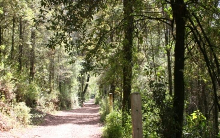 Foto de terreno habitacional en venta en  , los saúcos, valle de bravo, méxico, 829461 No. 02
