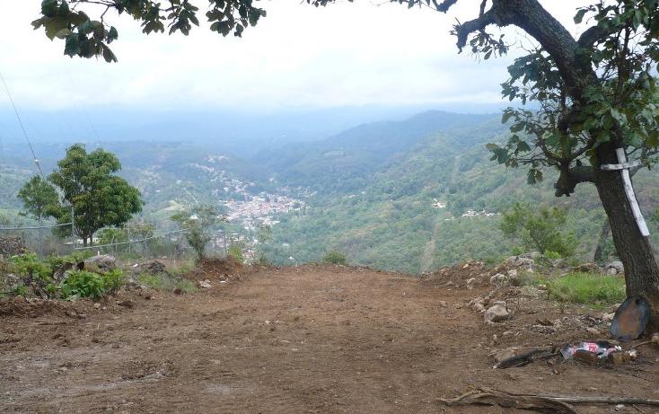 Foto de terreno habitacional en venta en  , los timbres, temascaltepec, méxico, 829483 No. 01