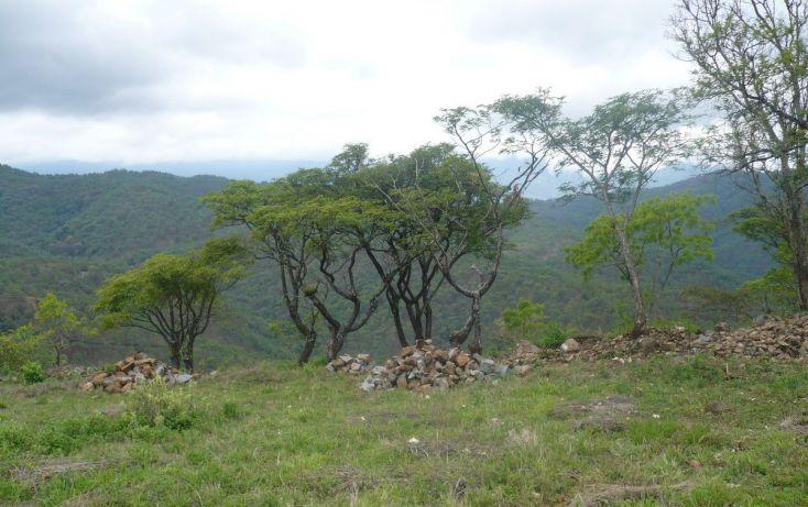 Foto de terreno habitacional en venta en, los timbres, temascaltepec, estado de méxico, 829483 no 02
