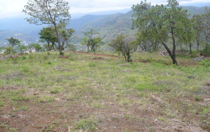 Foto de terreno habitacional en venta en, los timbres, temascaltepec, estado de méxico, 829483 no 03