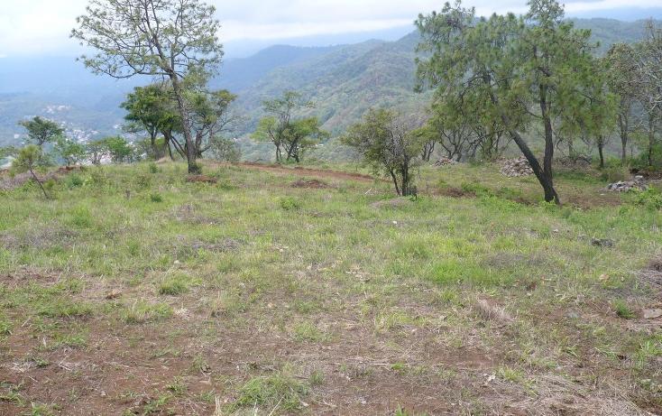 Foto de terreno habitacional en venta en  , los timbres, temascaltepec, méxico, 829483 No. 03