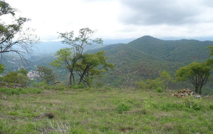 Foto de terreno habitacional en venta en  , los timbres, temascaltepec, méxico, 829483 No. 04