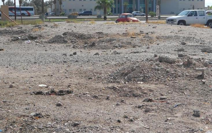 Foto de terreno comercial en renta en  , los viñedos, torreón, coahuila de zaragoza, 388736 No. 01