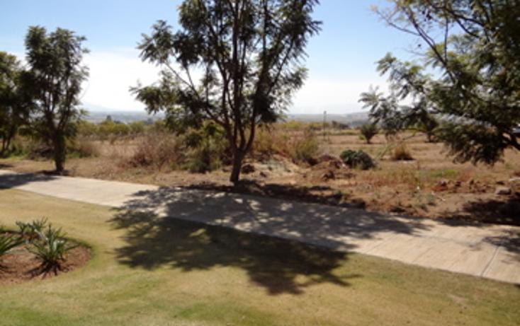 Foto de terreno habitacional en venta en  , el arenal, el arenal, jalisco, 1703482 No. 05