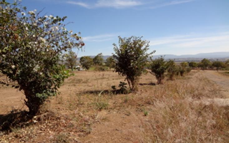 Foto de terreno habitacional en venta en  , el arenal, el arenal, jalisco, 1703482 No. 10
