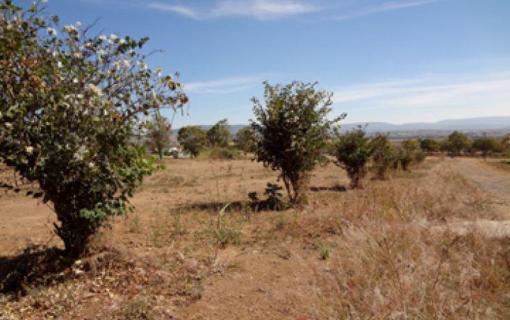 Foto de terreno habitacional en venta en lote 10 manzana 1 coto 2 sta sofia 10, el arenal, lagos de moreno, jalisco, 1703482 no 10